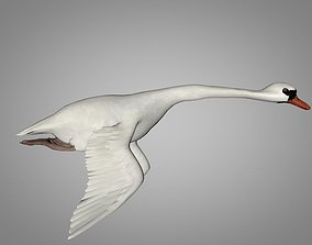 White and black Swan 3D asset