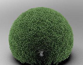 Spherical Tree 3D model