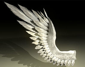 Bird Angel Wing 3D model