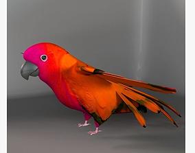 Parrot E 3D asset