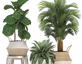 Decorative Banana tree in a basket for the 3D model 1