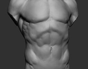 ztl 3D model Male Torso