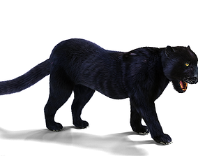 Realistic Fur Black panther Rigged 3D model