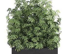 3D Decorative Cannabis in flowerpots 771