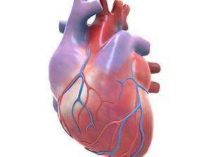 Human Heart 3D model realtime