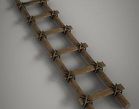 3D asset Old Ladder