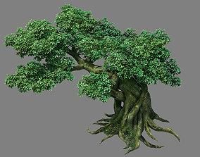 Kazlog shallow bay - tree 04 3D
