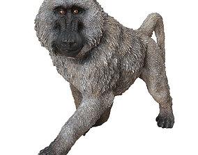 Deco Figurine Monkey Walking Baboon XL Print