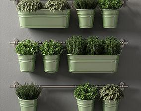 plants set 08 3D