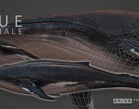 3D model low-poly Blue Whale
