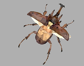 3D asset Chafer Beetle Low Polygon Art Insect