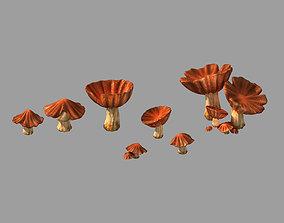 Dynasty City - Mushrooms 3D model
