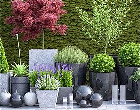 planter group full 3D model