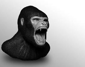 Gorilla bust no textures 3D