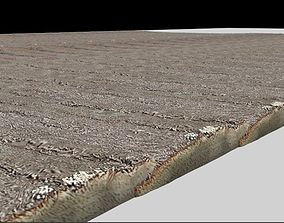 3D model realastic wooden floor and wooden wall