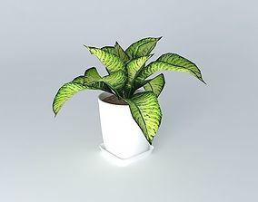 plant plant 3D model