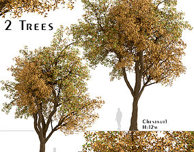 Set of Chestnut or Castanea Trees - 2 Trees 3D model