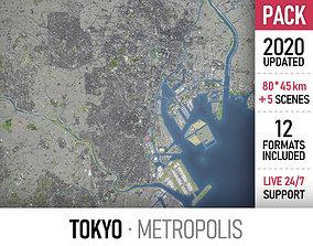 3D model Tokyo Metropolis - full city