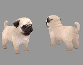 3D model Cartoon pet puppy - Paco - baby dog