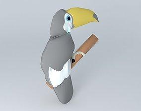 Toucan (Ramphastos toco 3D