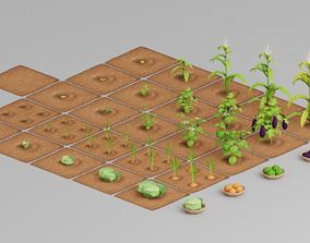 Vegetable Farm G42 3D model