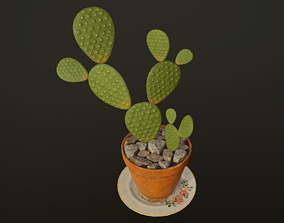 3D asset Cactus - PBR Game Ready