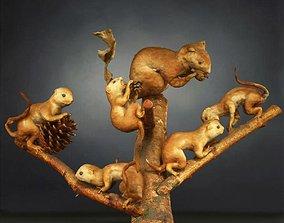 3D model Squirrels Photorealistic Posed
