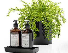3D Maidenhair ferns with decor set for bathroom