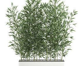 Bamboo bush for the interior in a white flowerpot 3D model