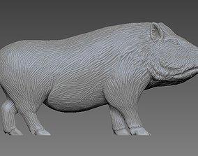 3D print model Wild Boar nature