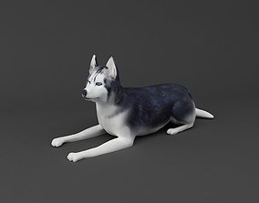 Siberian Husky 3D printable Dog model