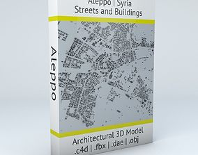 3D model Aleppo Streets and Buildings