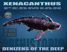 3D asset Xenacanthus