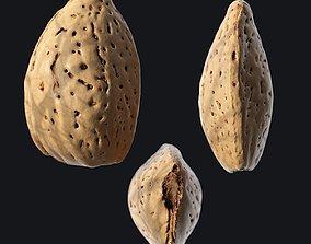 3D asset game-ready Almond Shell B