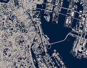 Tokyo city fragment 3d model cartography