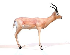 3D asset Impala