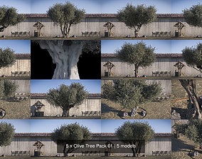 5 x Olive Tree Pack 01 leaves 3D