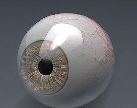 3D Human eye