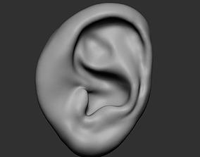 3D Ear v3
