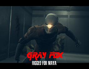 Gray Fox Character Rigged in Maya 3D asset