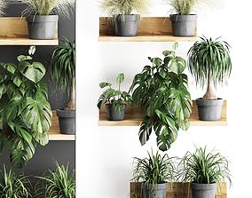 Plant set wall decor vertical garden 48 3D model