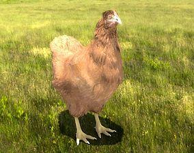 Chicken 3D model rigged