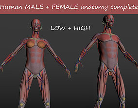 realtime Human MALE and FEMALE anatomy 3D model