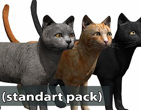 Cat pack 2 3D asset