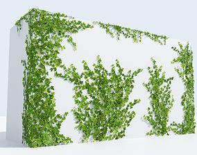 LowPoly Ivy 3D asset