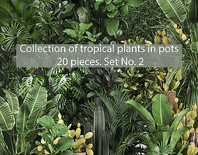 Collection of potted plants for the interior of 3D model 3