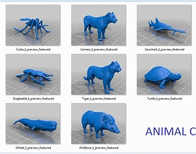 13 animal stl files bulk model collection