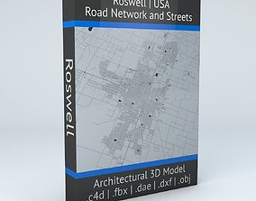 Roswell Road Network and Streets 3D model