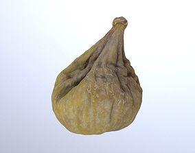 3D model Dry Fig