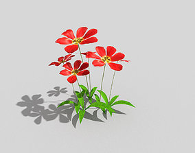 3D asset game-ready low poly flower